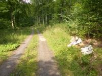 Zwischen Netze und Freienhagen hat ein Unbekannter Müll und Altöl entsorgt.
