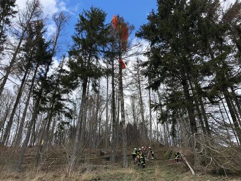 Ein Gleitschirmflieger verfing sich am Samstag bei Stormbruch in einem Baum.