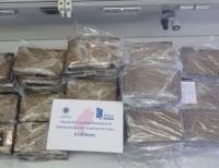 Kokain im Marktwert von über 3.000.000 Euro wurde in Bananenkisten sichergestellt