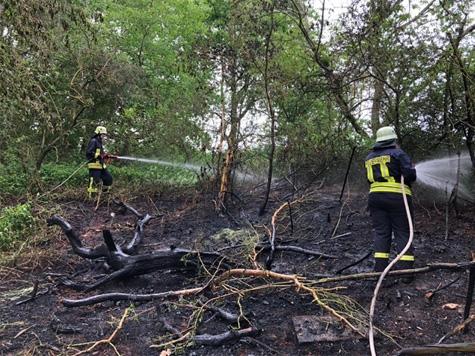 Die Wehren aus Burgwald (Waldeck-Frankenberg) rückten am 22. Mai zu einem Flächenbrand aus.