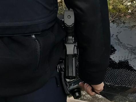 Am 17. Mai musste ein Beamter der Kasseler Polizei zur Dienstwaffe greifen.-