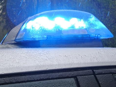 Ein vorbeikommender Autofahrer alarmierte die Polizei über den Vorfall.