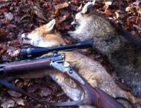 Bei einem Jagdansitz löste sich unbeabsichtigt ein Schuss aus einer Büchse - der Jäger wurde mit einem Rettungshubschrauber in eine Klinik nach Bochum geflogen.