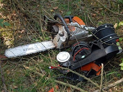 Bei Baumfällarbeiten ist am 24. September ein Forstmitarbeiter ums Leben gekommen.