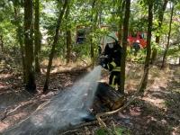 Ein Feuer am Wildpark Edersee konnte am 6. August schnell gelöscht werden.
