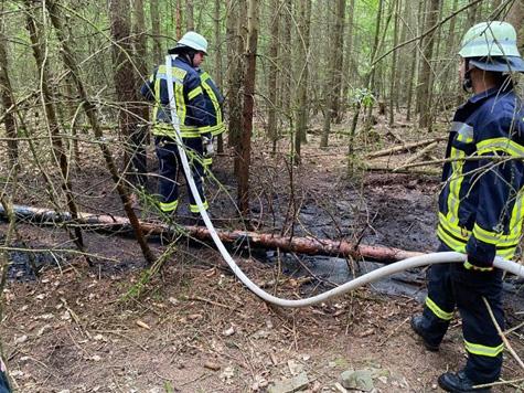 Am 1. Juli 2020 brannte ein Waldstück bei Basdorf - 50 Feuerwehrleute waren im Einsatz.