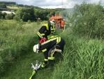 Ein herber Schlag für den Naturschutz an der Ruhr - am 15. Juni brannte ein Insektenhotel bei Bestwig nieder.