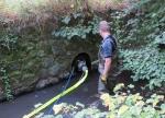 Die Bad Wildunger Feuerwehr rückte am 13. und 15. September zu Umwelteinsätzen aus.