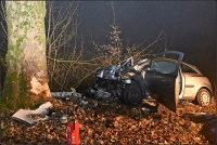 Der Fahrer des Opel starb beim Aufprall auf den Baum.