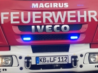 Eine Lebensbaumhecke brannte am 18. Juni in der Adolph-Varnhagen-Straße