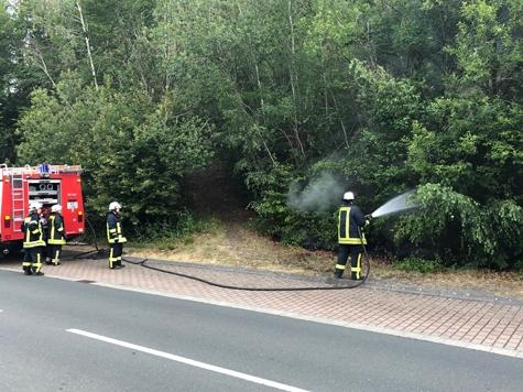 Am 10. Juli rückte die Feuerwehr Hemfurth zu einen Böschnungsbrand an den Edersee aus.