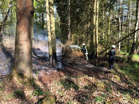 Bei Hemfurth kam es am Dienstag zu einem Waldbrand.