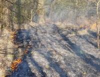 Die Korbacher Feuerwehr wurde am Samstag zu einem Waldbrand zwischen Korbach und Strothe alarmiert.