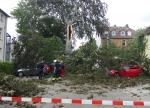 In Kassel stürzte am 26. August ein Buchenast auf abgestellte Fahrzeuge.