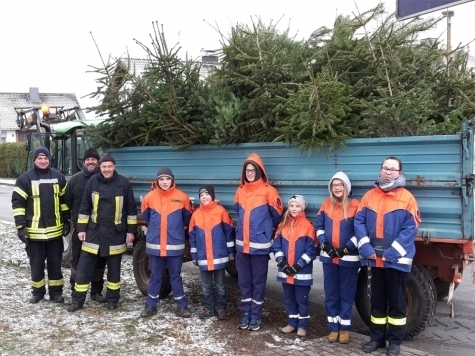 Vielerorts sammeln Jugendfeuerwehren im neuen Jahr ausgediente Weihnachtsbäume ein. Die Christbäume müssen abgeschmückt sein.