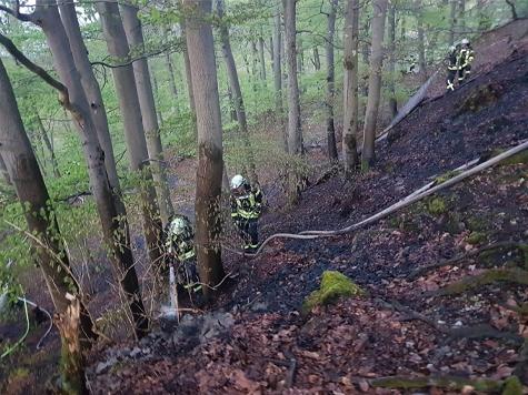 """Am """"Derkerstein"""" kam es am Ostermontag zu einem Waldbrand."""