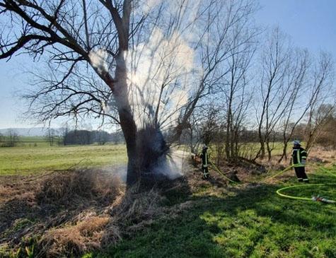 Dieser in Brand geratene Baum musste erst gefällt werden, bevor er abgelöscht werden konnte.