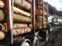 Ein mit Holzstämmen beladener Lkw mit Anhanger musste am 6. August von der Polizei bei Bühle (Landkreis Waldeck-Frankenberg) aus dem Verkehr gezogen werden.