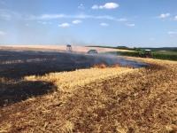 50 Einsatzkräfte bekämpften am 27. Juli einen Flächenbrand in der Germarkung Buhlen.