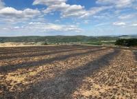Zwischen Wega und Mandern ereignete sich am Freitag ein Flächenbrand.