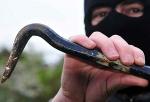 Die Polizei in Bad Wildungen sucht Hinweisgeber