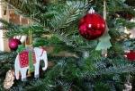 Wer möchte, dass sein ausgedienter Weihnachtsbaum abgeholt wird, muss ihn abgeschmückt an die Straße stellen.