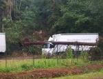 Die Freiwillige Feuerwehr Schreufa rückte am 20. Juli aus um einen Fichte von einem Lkw zu schneiden.